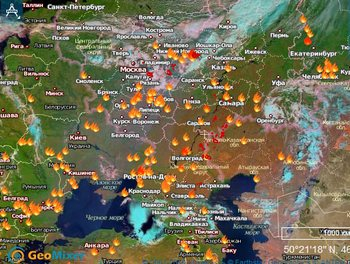 В  Николаевку, Михайловского района, Алтайского края, верховой пожар пришел  со стороны Казахстана. Фото ссайта mchs.gov.ru