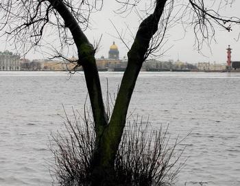 Наводнение в Санкт-Петербурге. Фото: STR/AFP/Getty Images