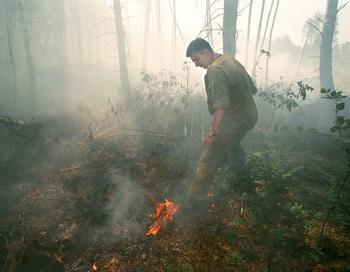 В лесах Забайкалья на сегодня зафиксирован 21 пожар. Фото: Alexandr Nemenov/AFP/Getty Images