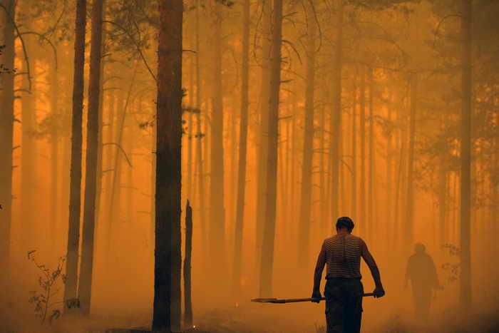 В Приморье введён особый противопожарный режим. Фото: NATALIA KOLESNIKOVA/AFP/Getty Images