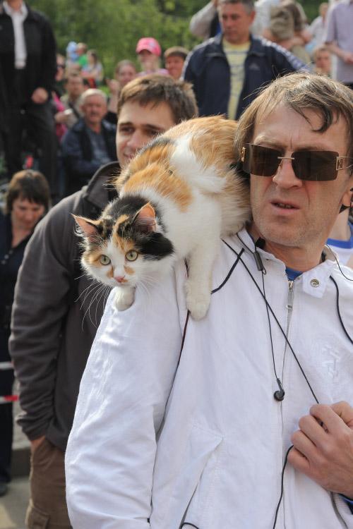 Карнавал в Иркутске. Фото: Николай Ошкай