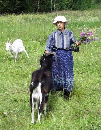 Лето в Гришино. ФОТО: GRISHINO.ECOLOGY.NET.RU
