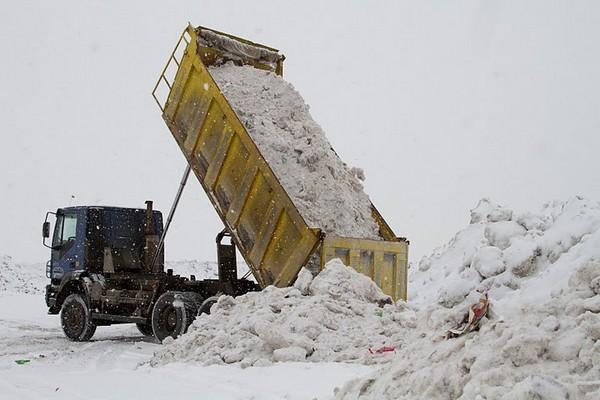 Инспекция снежной свалки на Канонерском острове. Фото предоставлено пресс-службой Санкт-Петербургского отделения Гринпис