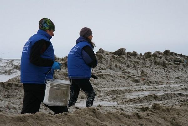 Инспекция на свалку снега на Васильевском острове.Фото предоставлено пресс-службой Санкт-Петербургского отделения Гринпис
