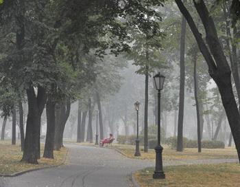 В Москве температура воздуха к выходным поднимется до 30 градусов. Фото: NATALIA KOLESNIKOVA/AFP/Getty Images