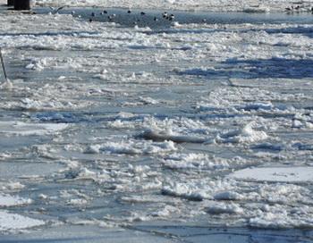 Пять паромов застряли во льду на реке Обь. Фото: Stuart Franklin/Getty Images