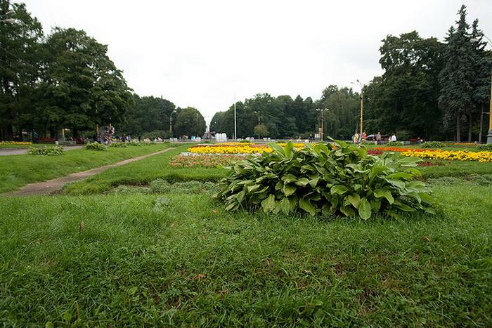 Парк «Сокольники», Москва. Фото: urbansheep/flickr.com