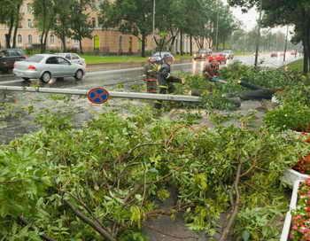 Ураган «Святой Иуда» в Санкт-Петербурге повалил 295 деревьев. Фото: ALEXANDER ROSCHIN/AFP/Getty Images