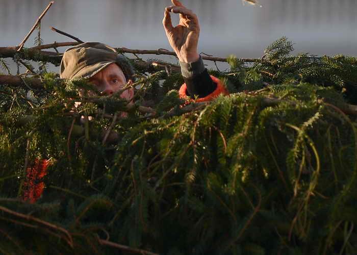 На центральной площади Владивостока упала новогодняя ёлка. Фото: GABRIEL BOUYS/AFP/Getty Images