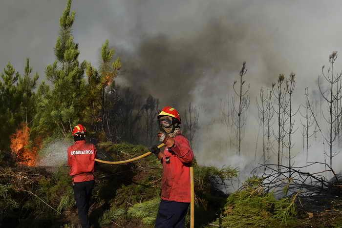 Лесные пожары в Португалии и Калифорнии. Фото: FRANCISCO LEONG/AFP/GettyImages