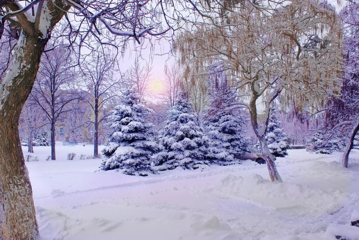 Декабрь 2013 года стал самым тёплым в истории российского метеонаблюдения. Фото: Ирина Рудская/Великая Эпоха (The Epoch Times)