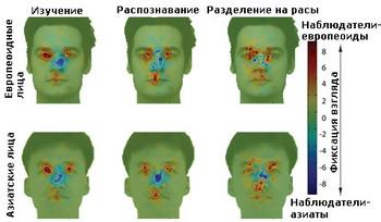 фото с сайта:podrobnosti.ua