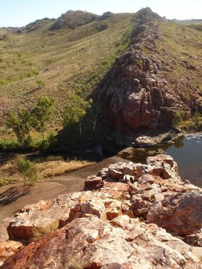 В Австралии обнаружены древнейшие ископаемые. Фото с spiegel.de
