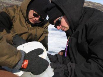 Уильям ДАндреа (справо) и Яунгсон Хуан из университета Брауна взяли образцы из двух озер в Гренландии для восстановления  истории климата 5600 лет назад около норвежского  заселения на западе. (Уильям ДАндреа / университет Брауна)