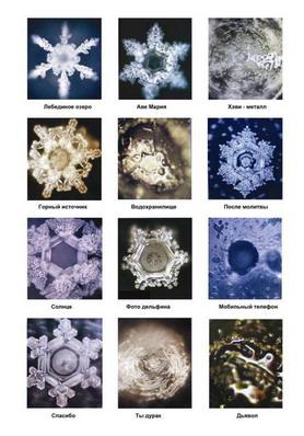 Кристаллы воды, подвергшиеся различным информациям. Фото: masaru-emoto.net