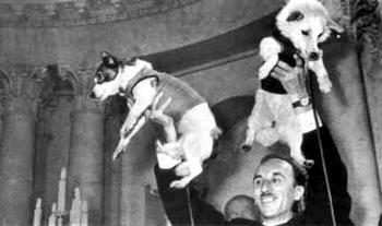 Полет Белки и Стрелки в космос был успешно осуществлен 50 лет назад. Фото с сайта kapyar.ru