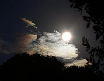 Многие полагают, что периодические изменения Луны влияют на людей. Фото с сайта theepochtimes.com