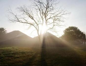 Утренний свет помогает регулировке ритма бодрствования и сна у подростков. Фото с сайта epochtimes.de