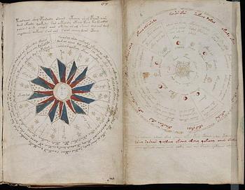 Таинственный манускрипт Войнича. Фото с сайта theepochtimes.com