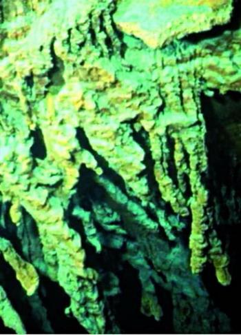 Бактерии на «Титанике»: Так выглядят «сосульки» из ржавчины на обломках «Титаника»,  созданные бактериальной коррозией. Фото с сайта theepochtimes.com