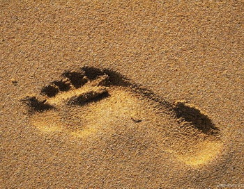 В Англии обнаружены следы древних людей. Фото с сайта stihi.ru