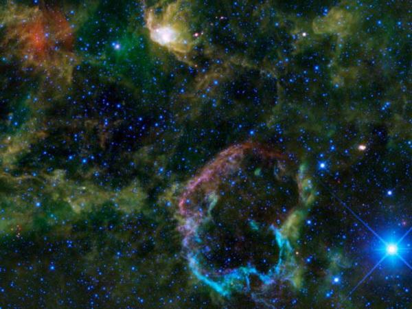 Космические подарки к Новому году от телескопа WISE. Туманность Медуза представляет собой оболочку взорвавшейся 5-10 тысяч лет назад крупной звезды. Фото с сайта Space.com
