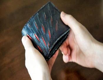Кошелек проконтролирует ваши расходы. Фото с сайта: nauka21vek.ru