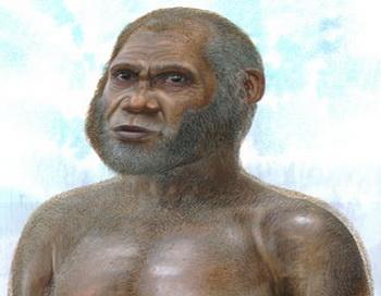 Новый вид древнего человека. Фото: Peter SCHOUTEN/newsroom.unsw.edu.au