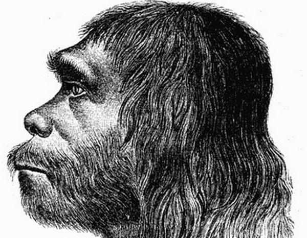Многие болезни достались нам от неандертальцев. Фото: Hermann Schaaffhausen/commons.wikimedia.org