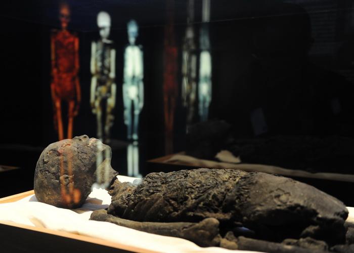 Трёхмерная компьютерная модель мумии Тутанхамона, созданная британскими учёными, помогла выяснить, отчего фараон умер в столь раннем возрасте. Оказалось, что он погиб под колёсами боевой колесницы. Фото: STAN HONDA/AFP/GettyImages