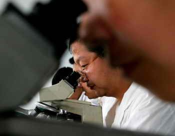 Самый крошечный многоклеточный организм обнаружен учёными. Фото: Guang Niu/Getty Images