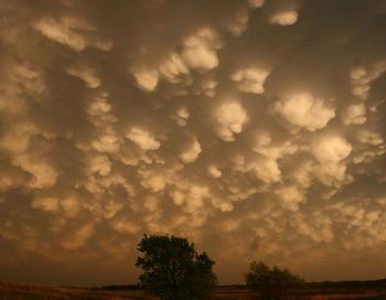 Вымеобразные облака,  находящиеся на нижней наковальне  восходящих потоков - кучево-дождевых бурь. Фото с сайта theepochtimes.com