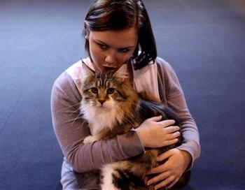Кошки помогают хозяевам избавиться от недуга. Фото: Oli Scarff/Getty Images