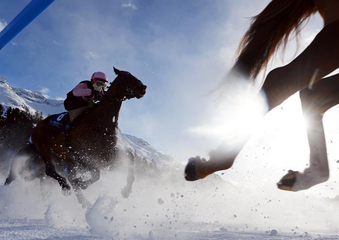 Конные скачки на льду в Санкт-Морице, Швейцария, 3 февраля 2013 года. Фото: Lars Baron/Bongarts/Getty Images