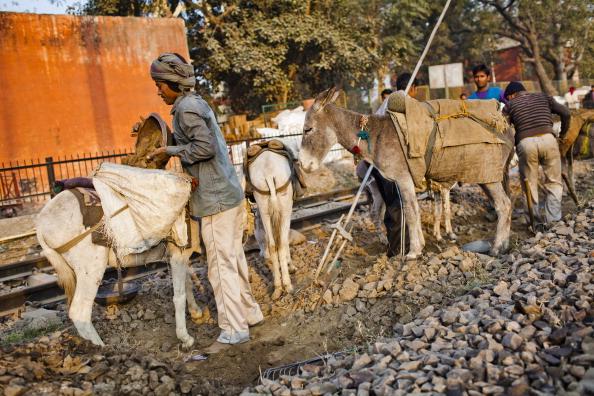 Железные дороги Индии: станция Низамуддин. Фоторепортаж. Фото: Daniel Berehulak/Getty Images
