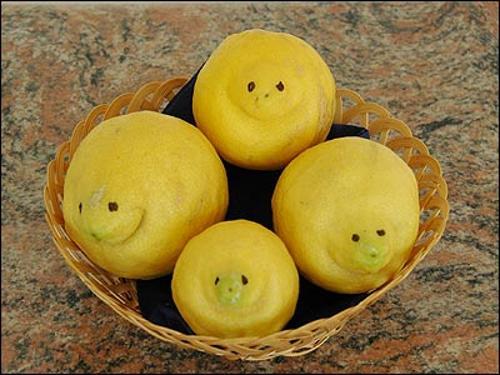 Поделки из овощей и фруктов: птицы, рыбки и зверушки. Фото с сайта planeta911.ru