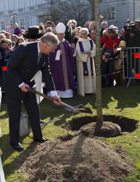Камилла и принц Чарльз в Дании после службы в английской церкви Сент-Олбанс посадили дерево. Фоторепортаж. Фото: Arthur Edwards - Pool /Getty Images