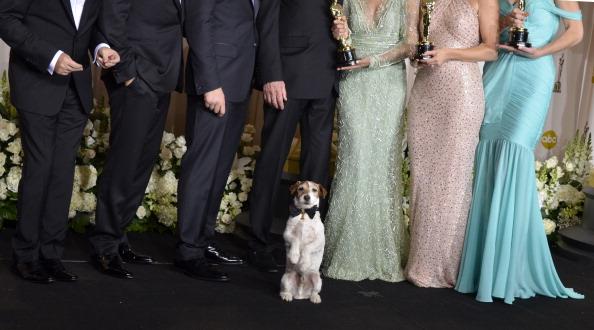 Терьер Угги стал первой собакой, получившей «Оскар» на сцене Kodak. Фоторепортаж. Фото: JOE KLAMAR/AFP/Getty Images