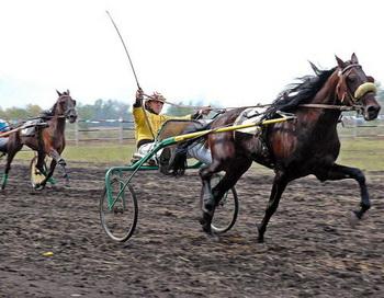 Чемпионат Сибирского федерального округа по адаптивному конному спорту стартовал в Иркутске. Фото: IGOR CHIZHOV/AFP/Getty Images