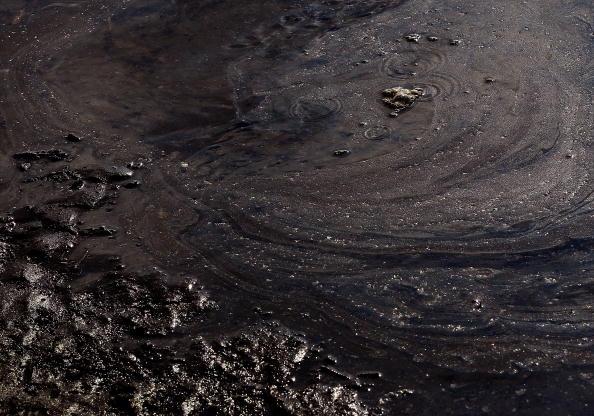 Загрязненное побережье Луизианы. Фото: Win McNamee/Getty Images
