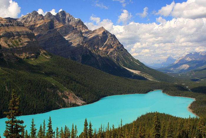 Голубое озеро Пейто в национальном парке Банф в Альберте, Канада. Фото: Frank Kovalchek/commons.wikimedia.org