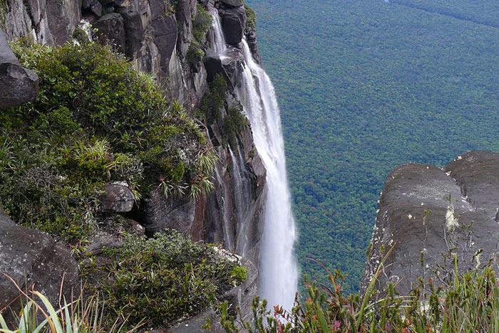 Водопад Анхель. Фото: Rafael Estrella/commons.wikimedia.org