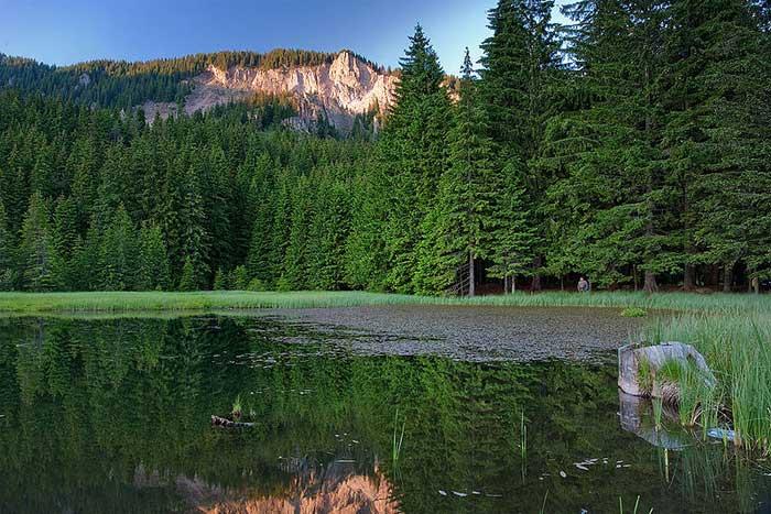 Озеро Тревисто, Болгария. фото: Evgord/commons.wikimedia.org