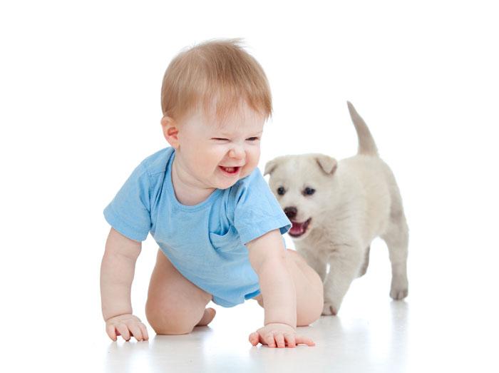 Малыш ждет приятных сюрпризов. Маленькие радости окрыляют детей. Фото: oksun70/Photos.com