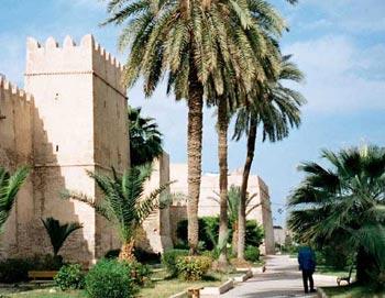 Тунис. Фото: Moumou82/commons.wikimedia.org