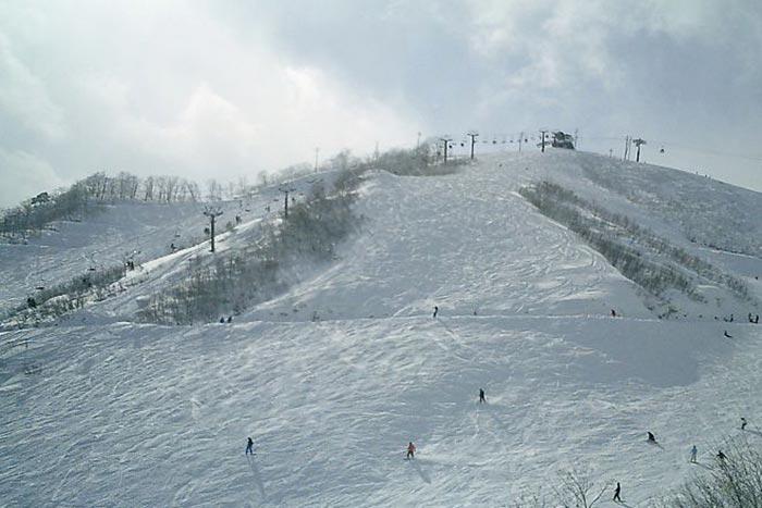 Хакуба является одним из самых популярных горнолыжных курортов Японии. Фото: Famifamifami/commons.wikimedia.org