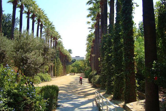 Исторический муниципальный сад, Никосия. фото: сommons.wikimedia.org