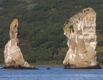 Камчатка. Фото РИА Новости