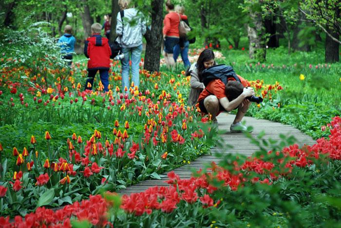 Москвичи и гости столицы гуляют в Аптекарском огороде в Москве во время цветения тюльпанов. Фото: Юлия Цигун/Великая Эпоха (The Epoch Times)