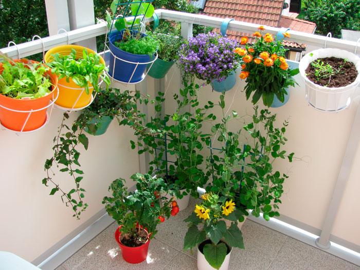 Цветы на балконе можно посадить в ящики или разместить на имеющиеся в продаже разнообразные подставки для цветов. Фото: Heike Rau/Photos.com